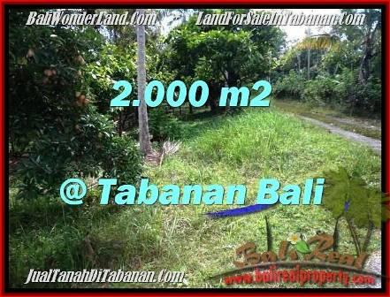 TANAH DIJUAL MURAH di TABANAN BALI 2,000 m2 di Tabanan Selemadeg