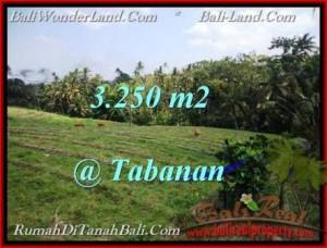 TANAH JUAL MURAH  TABANAN 32.5 Are View Sawah dan laut