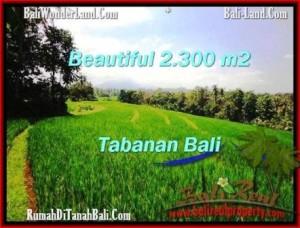 TANAH di TABANAN DIJUAL 2,300 m2 di Tabanan Selemadeg