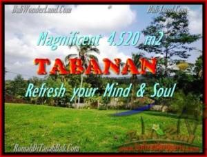 JUAL TANAH MURAH di TABANAN BALI 4.520 m2  View sawah dan kebun