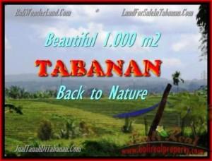 TANAH di TABANAN BALI DIJUAL MURAH 1.000 m2  View sawah dan laut