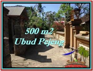DIJUAL TANAH di UBUD BALI Untuk INVESTASI TJUB515
