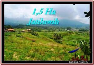 JUAL TANAH di TABANAN BALI 15,000 m2 View Gunung, sawah