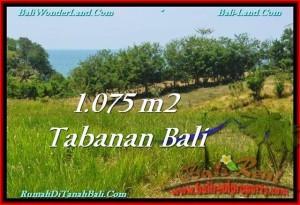 TANAH JUAL MURAH TABANAN 1,075 m2 View Laut dan Gunung