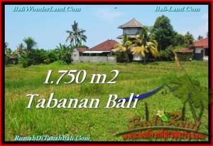 INVESTASI PROPERTI, DIJUAL TANAH di TABANAN BALI TJTB231