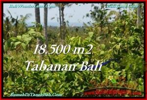 JUAL TANAH MURAH di TABANAN BALI 18,500 m2 View Laut dan Kebun