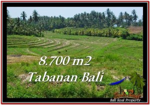TANAH DIJUAL MURAH di TABANAN 87 Are di Tabanan Selemadeg