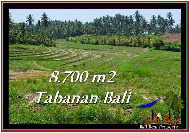 JUAL TANAH MURAH di TABANAN Untuk INVESTASI TJTB233