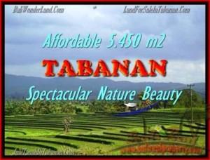 JUAL TANAH MURAH di TABANAN BALI Untuk INVESTASI TJTB152