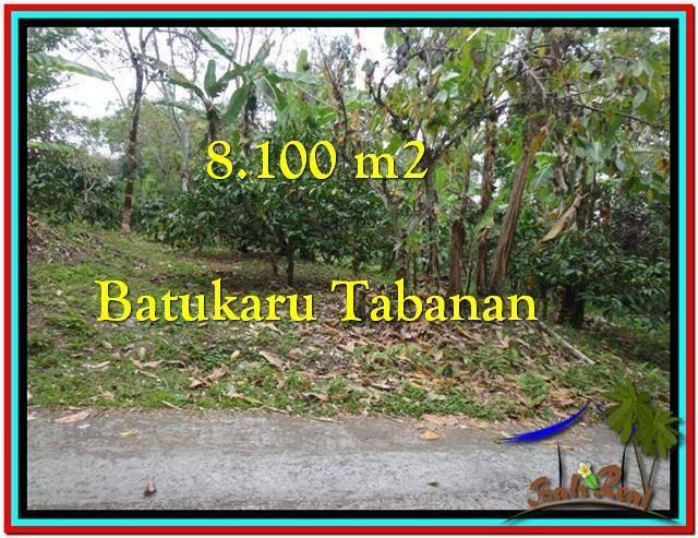 TANAH MURAH di TABANAN BALI 8.100 m2 di Tabanan Penebel
