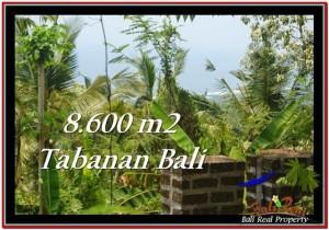 JUAL TANAH di TABANAN BALI 8,600 m2 view laut, hutan lindung, kebun