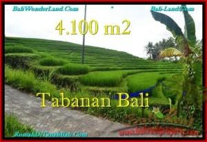 TANAH di TABANAN DIJUAL 4,100 m2 di Tabanan Selemadeg