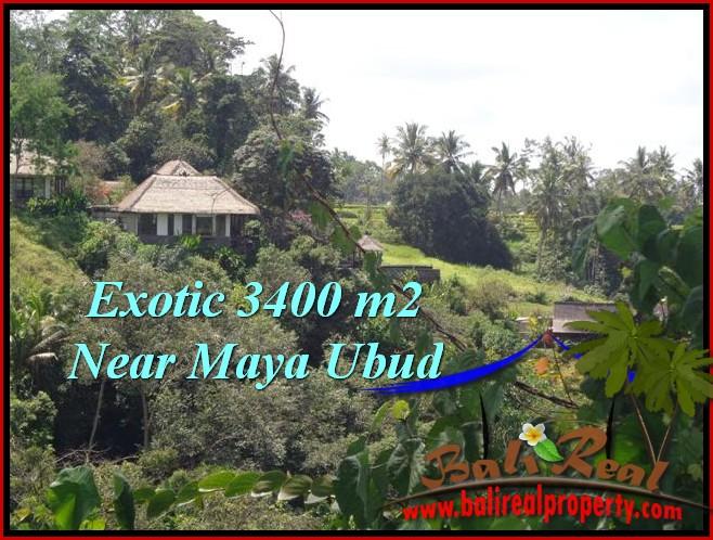 TANAH di UBUD BALI DIJUAL MURAH 34 Are View Sawah ,Tebing link Villa