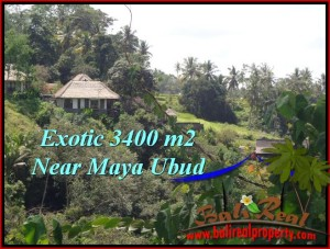 TANAH di UBUD BALI DIJUAL MURAH 3,400 m2  View Sawah ,Tebing link Villa
