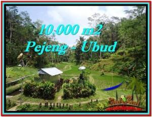 JUAL TANAH di UBUD 10,000 m2  View Sawah, Kolam, Pancoran