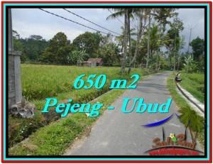 TANAH DIJUAL MURAH di UBUD 650 m2 di Ubud Tampak Siring