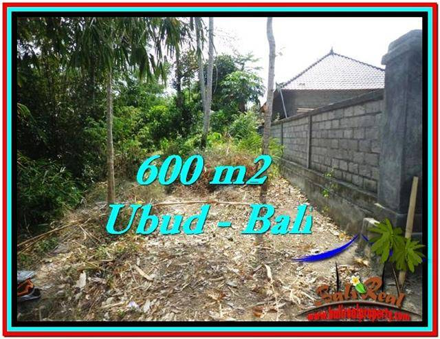 JUAL TANAH MURAH di UBUD BALI Untuk INVESTASI TJUB523