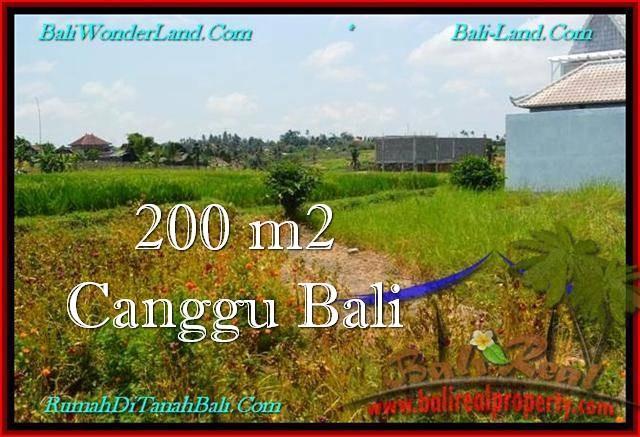 TANAH DIJUAL MURAH  CANGGU BALI 2 Are View sawah, lingkungan villa