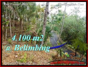 JUAL TANAH di TABANAN 4,100 m2  View Gunung,sawah