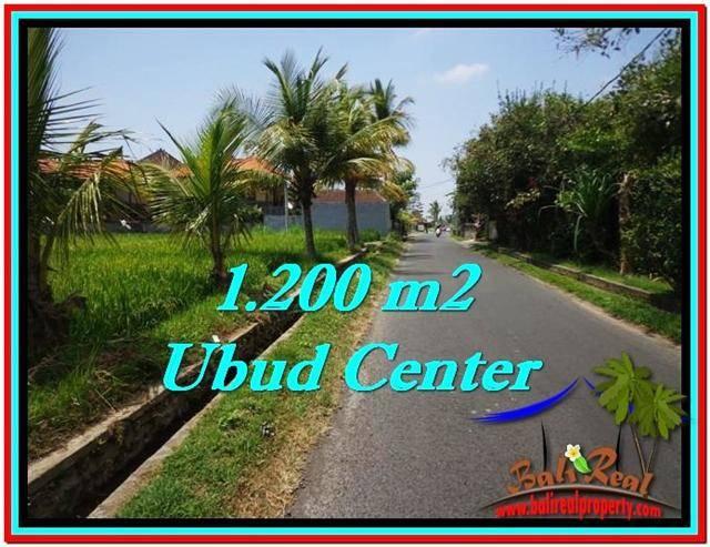 TANAH di UBUD BALI DIJUAL MURAH 1,200 m2  View Sawah, sungai kecil, link Villa