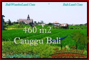 DIJUAL MURAH TANAH di CANGGU 460 m2 di Canggu Brawa