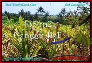 TANAH DIJUAL di CANGGU BALI Untuk INVESTASI TJCG196