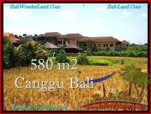 JUAL TANAH di CANGGU 580 m2 di Canggu Pererenan