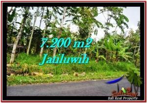 INVESTASI PROPERTY, TANAH di TABANAN BALI DIJUAL MURAH TJTB226