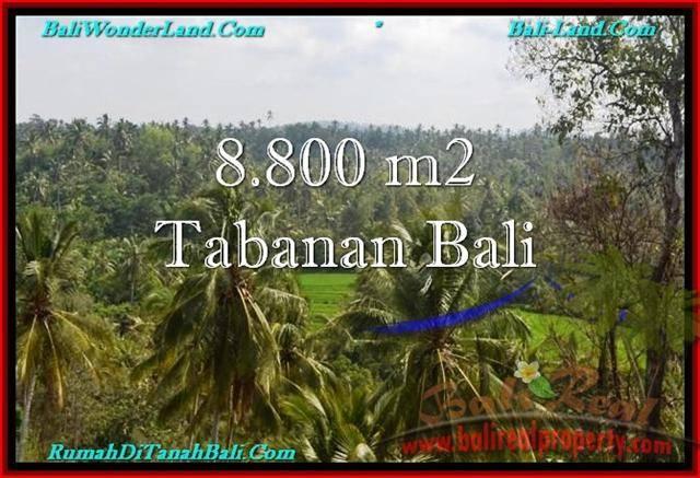 INVESTASI PROPERTY, JUAL TANAH MURAH di TABANAN BALI TJTB238