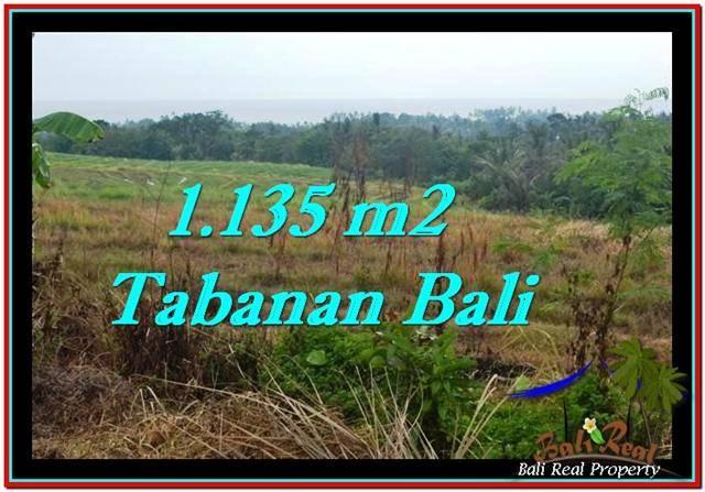 TANAH DIJUAL MURAH di TABANAN 11.35 Are di Tabanan Selemadeg
