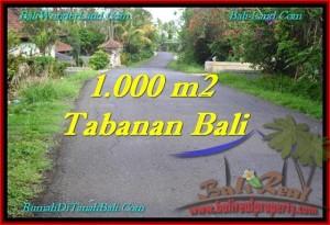 TANAH di TABANAN BALI DIJUAL MURAH 10 Are View Kebun