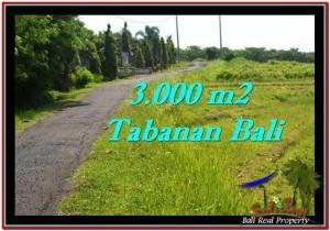 JUAL TANAH di TABANAN 30 Are View sawah, sungai dan laut