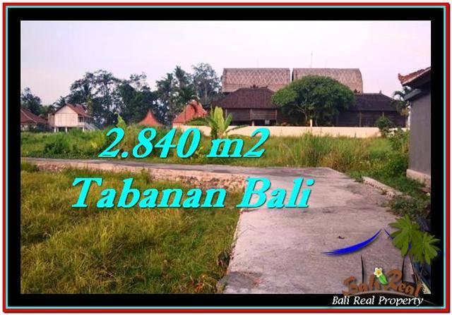 TANAH JUAL MURAH  TABANAN 2,840 m2  View sawah