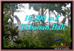 JUAL TANAH MURAH di TABANAN 18,200 m2 View kebun dan laut