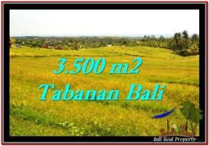 JUAL TANAH MURAH di TABANAN BALI Untuk INVESTASI TJTB259