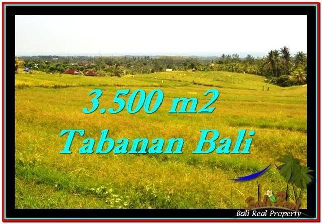 JUAL TANAH di TABANAN 35 Are View sawah dan laut