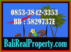 Jual Tanah di Bali - www.balirealproperty.com