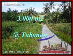 TANAH DIJUAL MURAH di TABANAN Untuk INVESTASI TJTB205