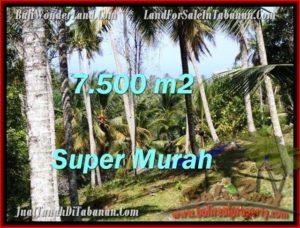 INVESTASI PROPERTY, TANAH di TABANAN BALI DIJUAL MURAH TJTB207