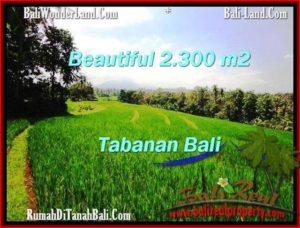JUAL TANAH MURAH di TABANAN BALI TJTB209
