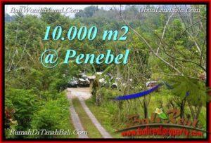 TANAH MURAH JUAL di TABANAN BALI 10,000 m2 View Gunung, sawah jatiluwih