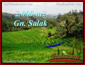 INVESTASI PROPERTI, TANAH MURAH DIJUAL di TABANAN BALI TJTB220