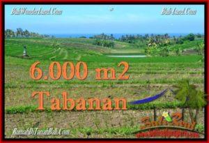 TANAH di TABANAN BALI DIJUAL MURAH 6,000 m2 View Laut, Gunung dan sawah