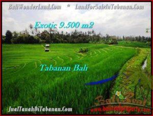 TANAH DIJUAL MURAH di TABANAN 9,500 m2 di Tabanan Selemadeg