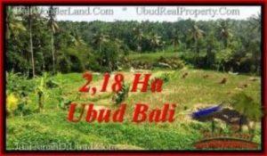 JUAL TANAH MURAH di UBUD 21,800 m2 di Sentral Ubud