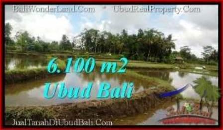 INVESTASI PROPERTY, TANAH MURAH di UBUD BALI DIJUAL TJUB547