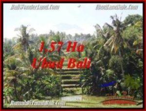 TANAH di UBUD BALI DIJUAL MURAH 157 Are View Sawah, gunung dan sungai