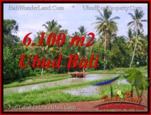 TANAH di UBUD BALI DIJUAL MURAH Untuk INVESTASI TJUB552