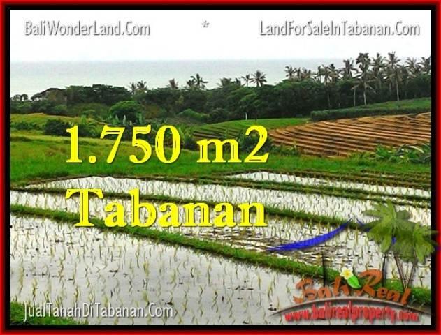 TANAH JUAL MURAH  TABANAN 1,775 m2  View Laut, Sawah dan Gunung