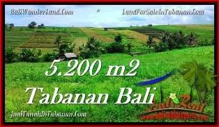TANAH MURAH di TABANAN BALI 5,200 m2 di Tabanan TJTB281
